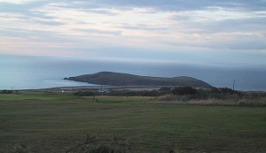 Cardigan Island seen from our top field